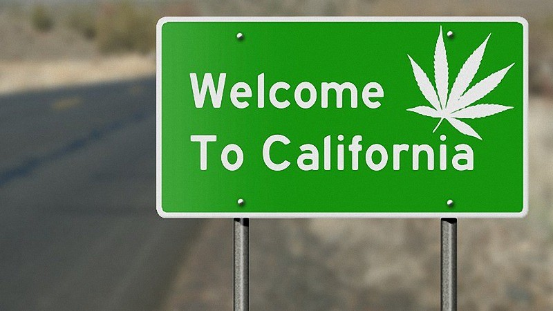 Where to Buy CBD Oil in California?
