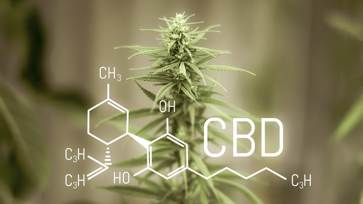 hemp flower and cbd chemistry molecule illustration