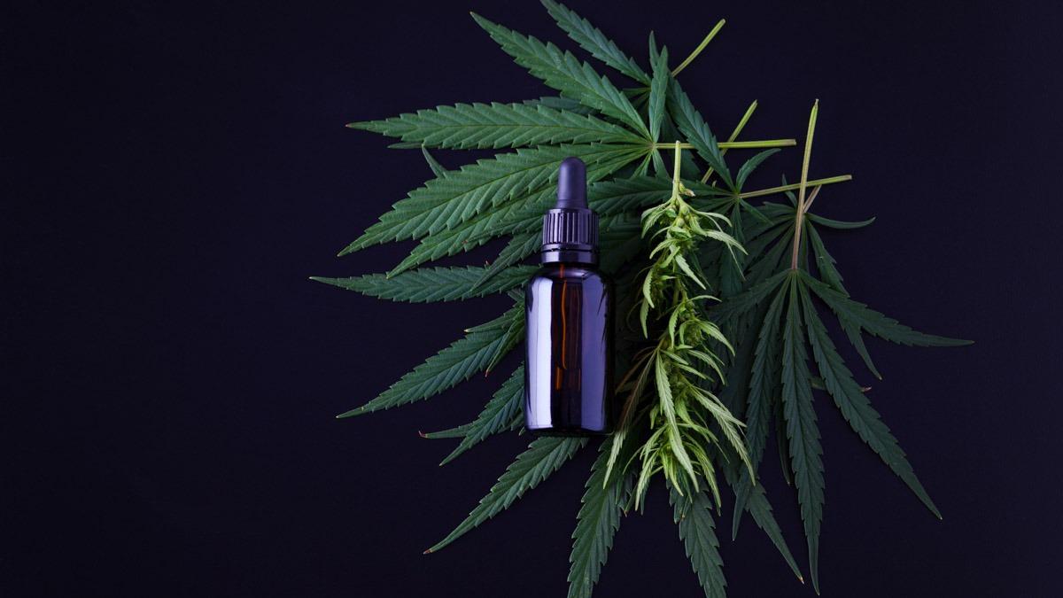 cbd oil bottle is on top of hemp leafs in black background