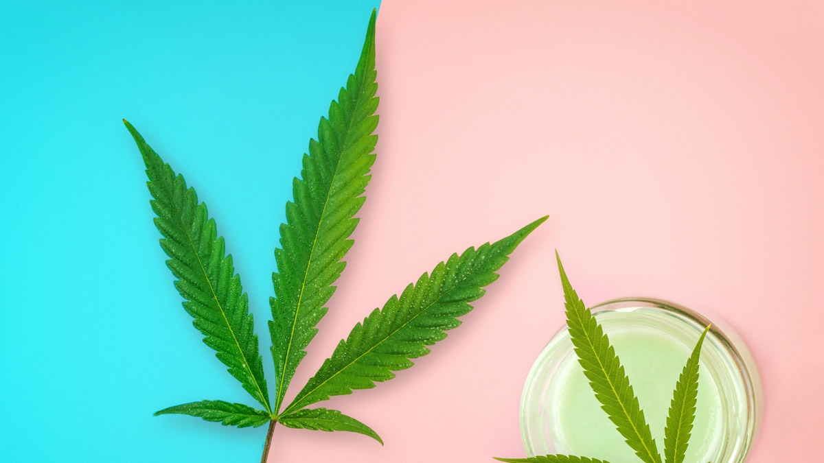Jar with CBD lotion and Cannabis leaf in the middle of pastel pink and blue background