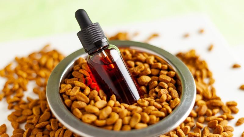 cbd oil and dog treat