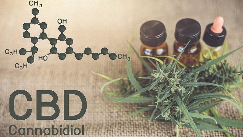 Molecular Structure of CBD with CBD Oil and Hemp Plants
