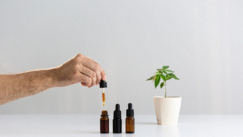 Hand Holding CBD Dropper with Three Bottles of CBD and Hemp Plant on a Pot