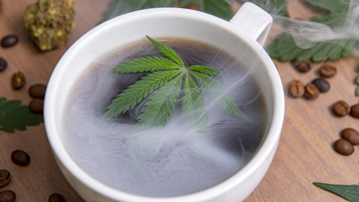 Hemp leaf inside a coffee cup with coffee bean and hemp flower on a wooden table