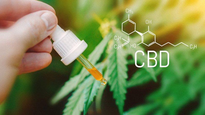 CBD oil dropper with CBD Chemical formula, Beautiful background of green hemp