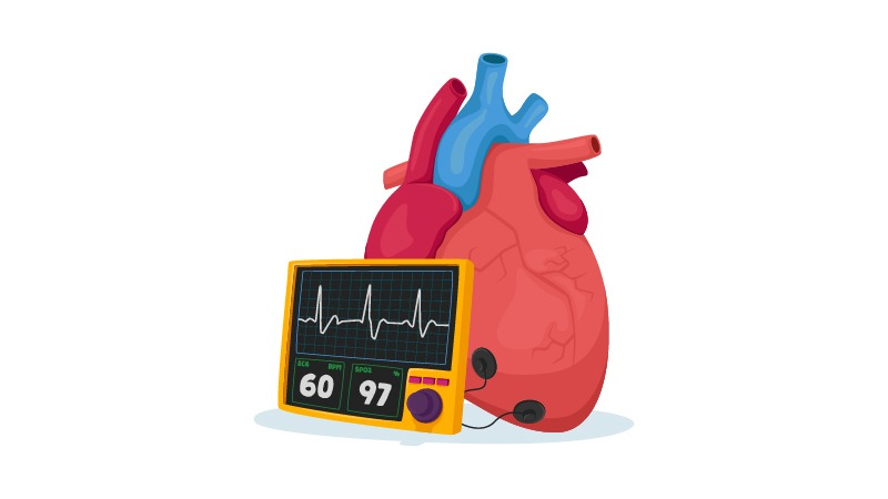 Illustration of a heart and blood pressure monitor on white background