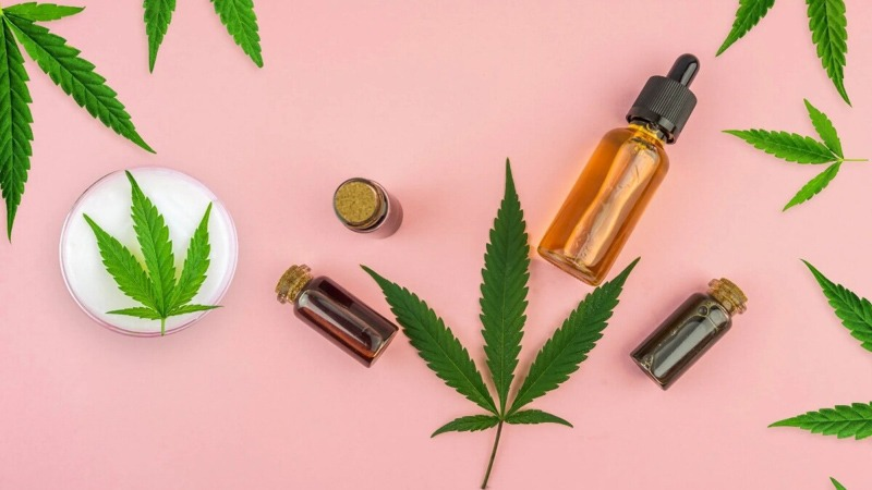 CBD Products with Hemp Leaves on a Pink Background