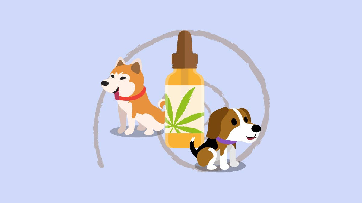 Illustration of dogs with a bottle of cbd pet oil