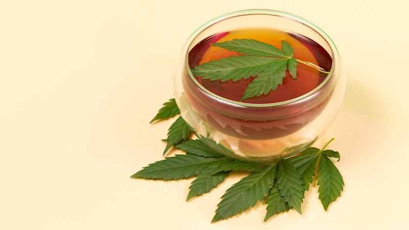 Tea on a Glass with Hemp Leaf on Top with Another Hemp Leaves on the Peach Surface