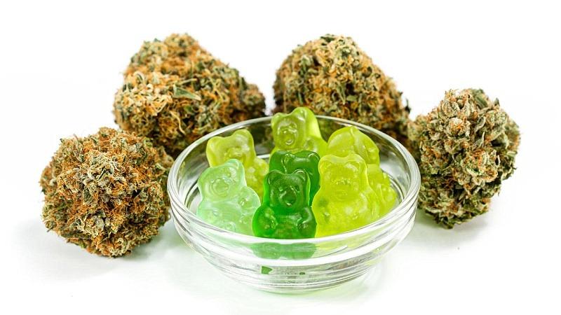 Cannabis with CBD gummies in a bowl